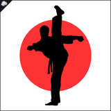 Martial arts. Karate fighter silhouette scene. Fighting combat Fighter in kimono dogi taekwondo hapkido Vector EPS Stock Photos