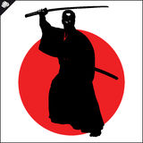 Martial arts. Karate fighter silhouette scene. Royalty Free Stock Photo