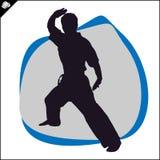 Martial arts. Karate fighter silhouette scene. Stock Image