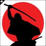 Martial arts. Karate fighter silhouette scene. Stock Photos