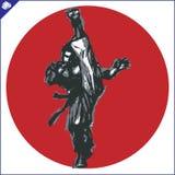 Martial arts. Karate fighter silhouette scene. Stock Photo