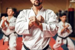 Martial arts fighters hone their skills. Martial arts karate fighters, master and his disciples in white kimono and black belts hone their skills, fight training Royalty Free Stock Photography