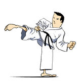 Martial arts - Karate kick Stock Image