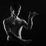 Martial Arts. Kung Fu kata. Royalty Free Stock Photography