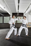 Martial arts master Stock Photo
