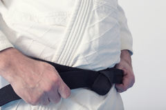 Martial arts Master. With black belt Royalty Free Stock Photo