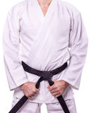 Martial arts Master with black belt. On white background Stock Images