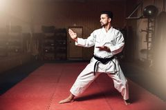 Martial arts master on fight training in gym. Martial arts karate master in white kimono and black belt on fight training in gym practicing kata royalty free stock image
