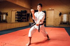 Martial arts master on fight training in gym Stock Image