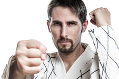 Martial arts master hapkido exercise Royalty Free Stock Image