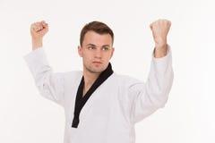 Martial arts master Royalty Free Stock Image