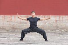 Martial arts master practicing against ancient wall, Beijing, China Stock Photos