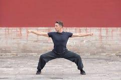 Martial arts master practicing against ancient wall, Beijing, China Royalty Free Stock Image