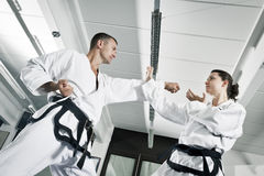 Martial arts masters Royalty Free Stock Image