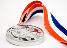 Martial Arts Medal Royalty Free Stock Images