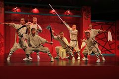 Martial arts performance Stock Image