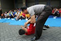 Martial arts Royalty Free Stock Photos