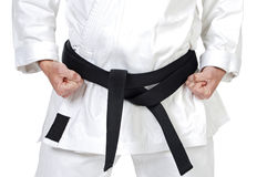 Martial Arts Pose Stock Images