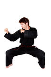 Martial arts position Stock Image