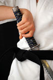 Martial arts practice Royalty Free Stock Photography