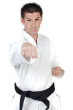 Martial arts punch Royalty Free Stock Photo