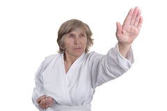 Martial arts for retired people Royalty Free Stock Photo