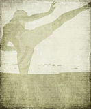 Martial Arts silhouette on grey grunge background Royalty Free Stock Images
