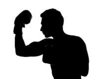 Martial arts Stock Image