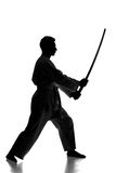 Martial arts. Silhouette of martial arts man is standing with a sword, isolated on the white background Stock Photos