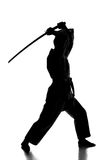 Martial arts. Silhouette of martial arts man is standing with a sword, isolated on the white background Stock Photo
