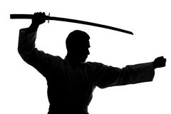 Martial arts. Silhouette of martial arts man is standing with a sword, isolated on the white background Royalty Free Stock Photo