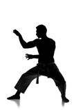 Martial arts. Silhouette portrait of a martial arts master on the white background Royalty Free Stock Images