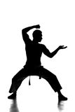 Martial arts. Silhouette portrait of a martial arts master on the white background Stock Images