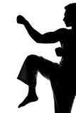 Martial arts. Silhouette portrait of a martial arts master on the white background Royalty Free Stock Photo