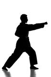 Martial arts. Silhouette of young man is practicing martial arts over white background Royalty Free Stock Photography