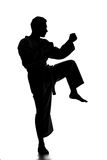 Martial arts. Silhouette of young man is practicing martial arts over white background stock image