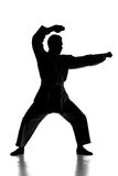 Martial arts. Silhouette of young man is practicing martial arts over white background Stock Photos