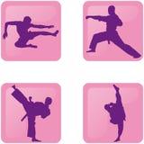 Martial arts silhouettes icons Stock Photos