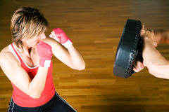Martial Arts Sparring Stock Photography