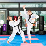Martial Arts sport training in gym Stock Image