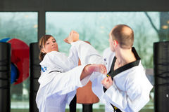 Martial Arts sport training in gym. People in a gym in martial arts training exercising Taekwondo, both have a black belt Royalty Free Stock Photo