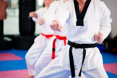 Free Martial Arts Sport Training In Gym Stock Photography - 18050292