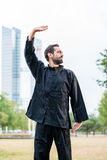 Martial arts sportsman practicing karate in city Stock Photography