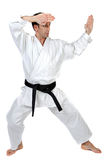 Martial arts stance royalty free stock photo