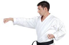 Martial arts stance royalty free stock images
