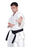 Martial arts stance Stock Images