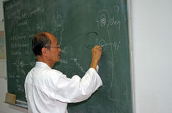 Martial arts teacher Stock Images