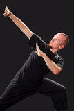 Martial arts teacher in fighting pose Royalty Free Stock Photography