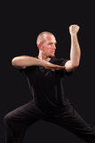 Martial arts teacher fighting stance Stock Image