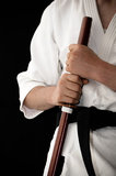 Martial arts training Royalty Free Stock Photos